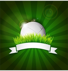 Volleyball ball on field grass vector