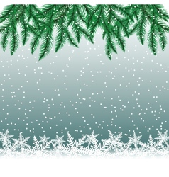 Fir tree branches and snowflakes vector