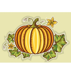 Pumpkin yellow fresh vector