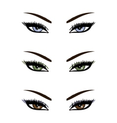 Sexy eyes collection vector