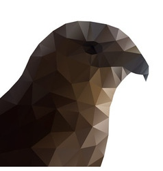 Hawk eagle head polygonal vector
