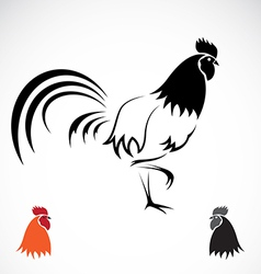 Image of an cock vector