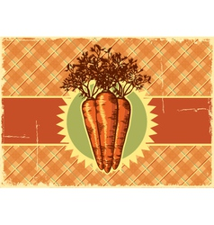 Carrots vintage label vector
