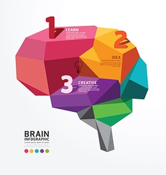Infographic brain design conceptual vector