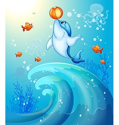 A dolphin playing a ball under the sea vector