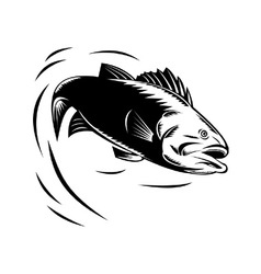 Sea bass jumping retro vector