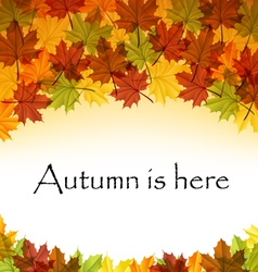 Autumn leaves text frame vector