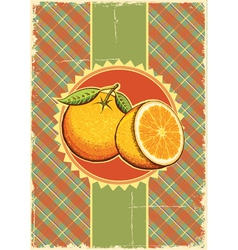 Orange fresh fruits vector