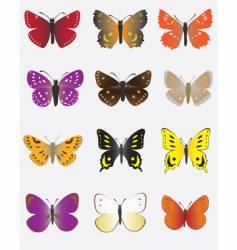 A collection of colored butterflies vector