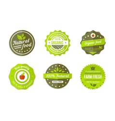 Natural badges vector
