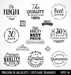 Premium quality badges and labels in vintage style vector