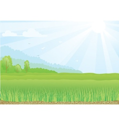 Green field with sunshine rays vector
