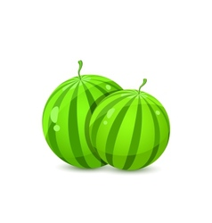 Two juicy whole watermelons vector
