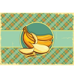 Bananas label vintage fruits vector