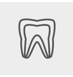 Molar tooth thin line icon vector