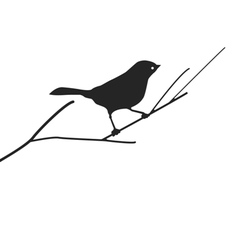 Bird on branch vector
