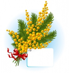 Bouquet of mimosa and forgetmenot vector