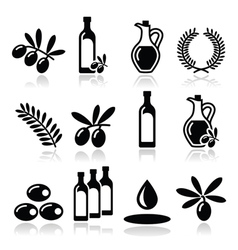 Olive oil olive branch icons set vector