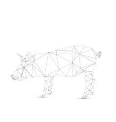Abstract pig vector