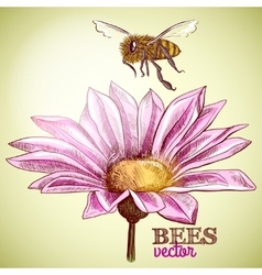 Flying honey bee and blossoming flower background vector
