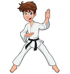 Young boy karate player vector