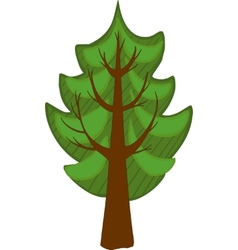 Cartoon conifer tree isolated vector