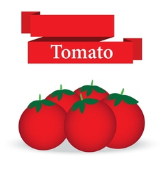 Fresh tomato on white background vector