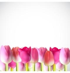 Beautiful pink realistic tulip vector
