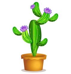A cactus plant in a pot vector