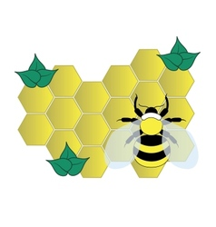 Bee on the honey cells vector