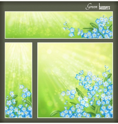 Green banners set with flowers and blurred sunrays vector