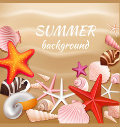 Seashell sand summer background vector