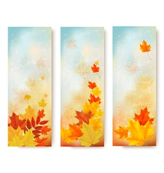 Three abstract autumn banners with color leaves vector
