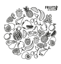 Fruits and berries icons vector