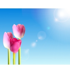 Beautiful pink tulips against shiny sky vector