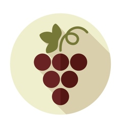 Grapes flat icon with long shadow vector