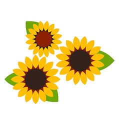 Sunflowers symbol vector