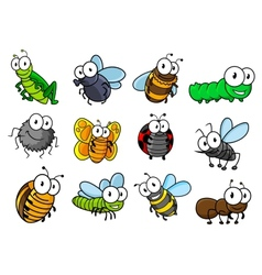 Colorful set of cartoon insects characters vector