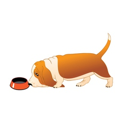 Hungry basset hound vector