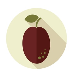 Plum flat icon with long shadow vector