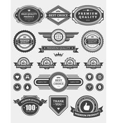 Vintage style retro emblem vector