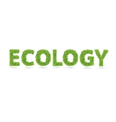 Ecology text of green leaves vector