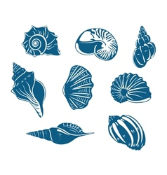 Blue shells and mussels set vector