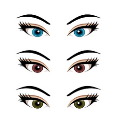 Set female eyes isolated 3 vector