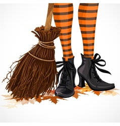 Halloween closeup witch legs in boots vector