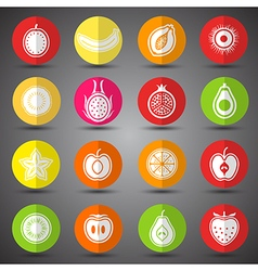 Fruits icons3 vector