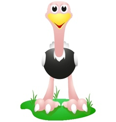 Ostrich with simple gradient vector