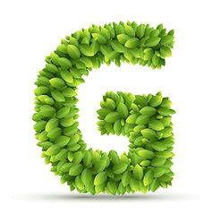 Letter g alphabet of green leaves vector