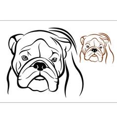English bulldog 1 vector