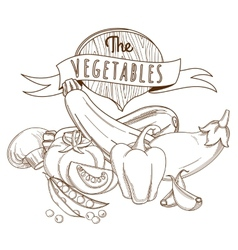 Outline hand drawn sketch vegetable still life vector
